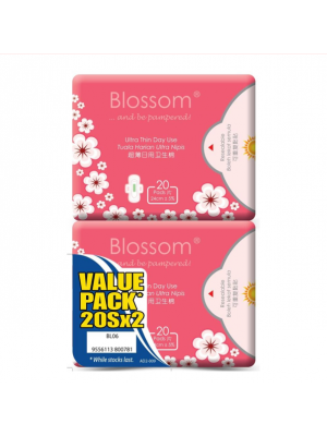 Blossom Day Use Ultra Thin Wing -Cottony Surface 2x20's  (Value Pack)