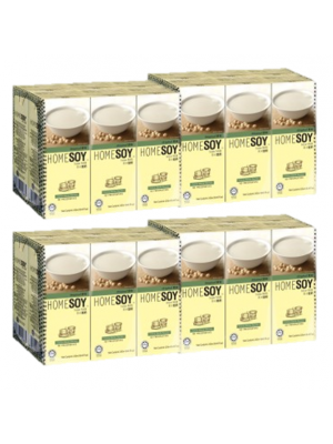 Homesoy Original Soya Milk 24x250ml