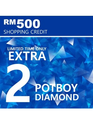 5) Shopping Credit RM 500 with 2 Extra Diamond